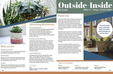 Newsletter_DesignLayout1
